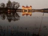 2013-04_Moritzburg-9559