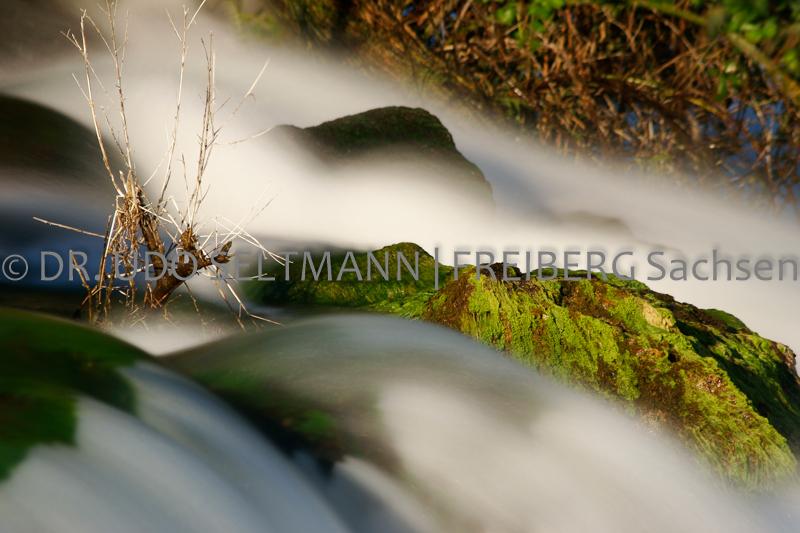 IMG_0119_Rheinfall_2012
