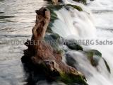 IMG_0059_Rheinfall_2012