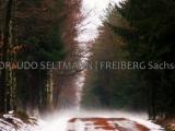 IMG_5898_Reichenbach_2006