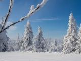 2013-07_Winter-Zinnwald_5277