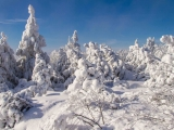 2013-07_Winter-Zinnwald_5281