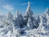 2013-07_Winter-Zinnwald_5288