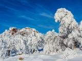 2013-07_Winter-Zinnwald_5330