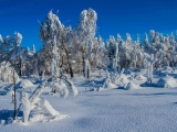 2013-07_Winter-Zinnwald_5395