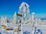 2013-07_Winter-Zinnwald_5431