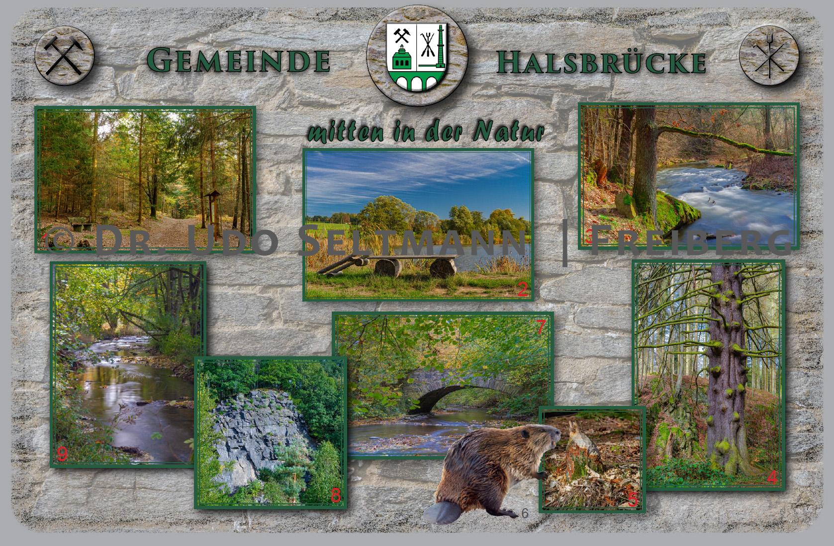 GK 964 Natur Haksbrücke (mit WissensEule) / Auftragsarbeit