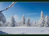 GK 604 Winter im Osterzgebirge (Zinnwald)